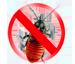 Control de Plagas y/o aves